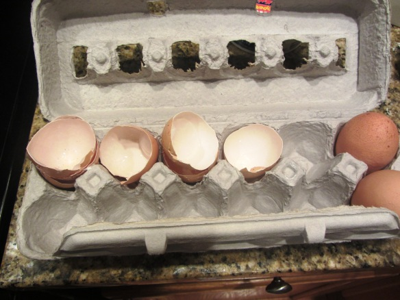Repeat this process until all 4 eggs have been incorporated.