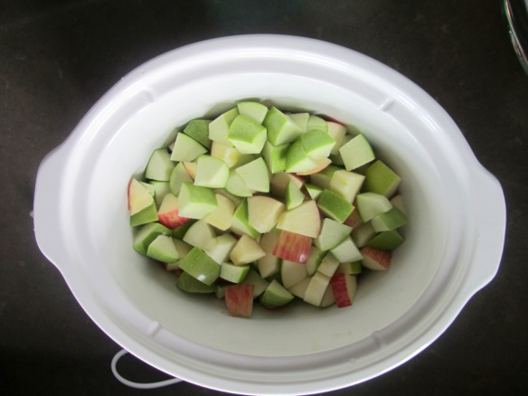 Chop the apples up into uniform pieces and place in the bottom of the crock pot.