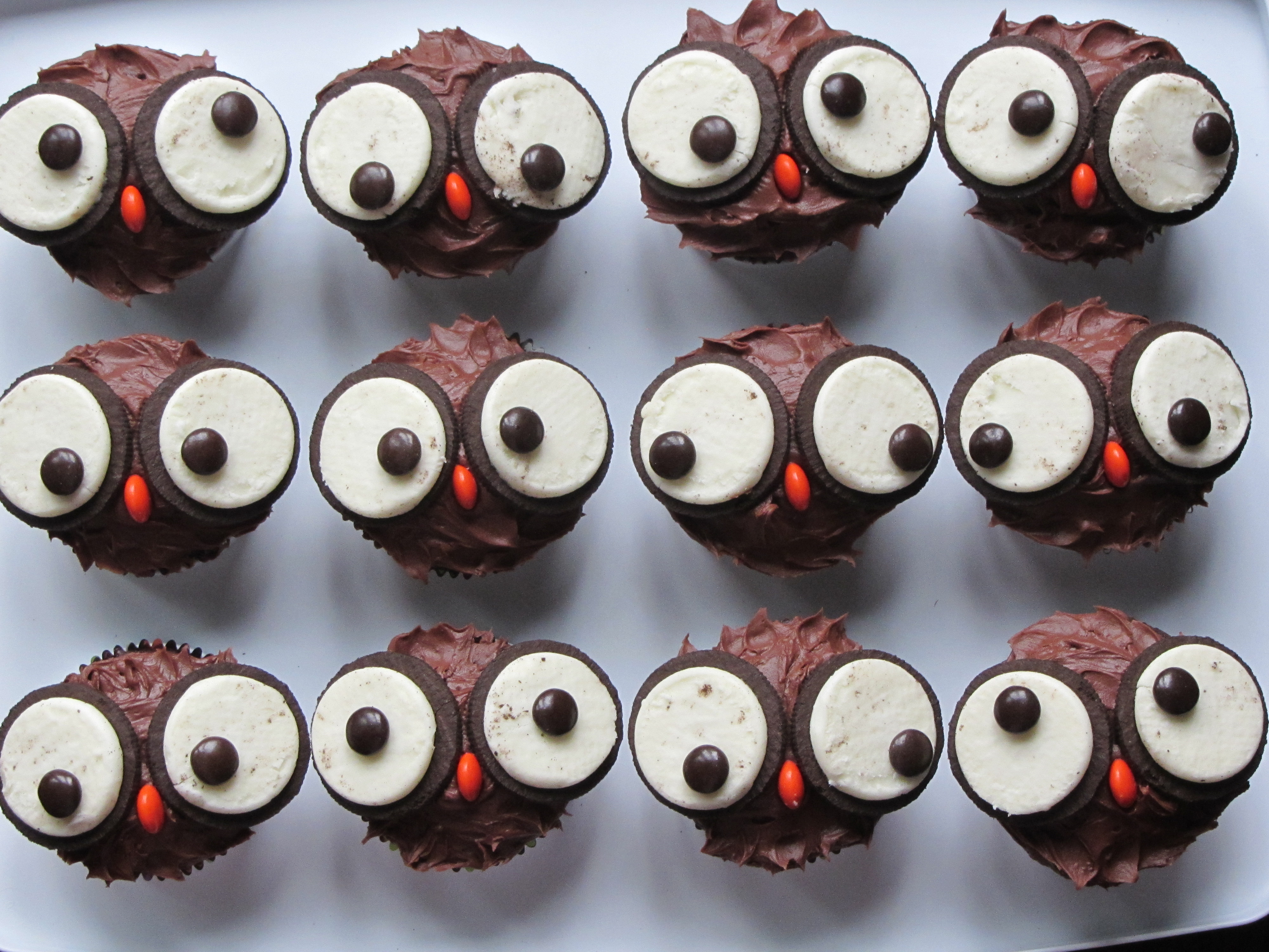 OWL CUPCAKES For childrens