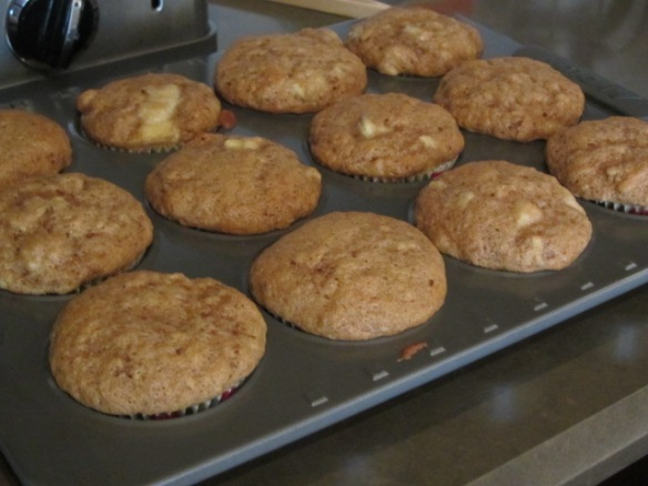 Bake for 17-20 minutes or until a toothpick inserted into the center of a muffin comes out clean.