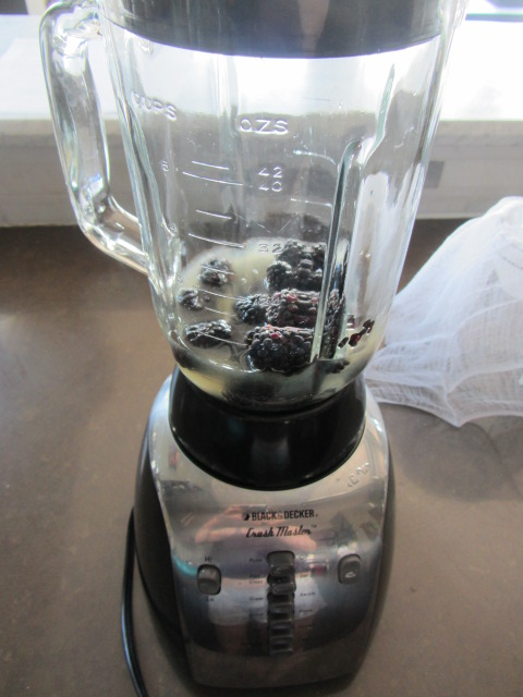 Add the simple syrup, lemon juice, and blackberries to a blender.