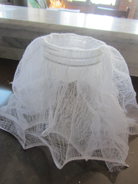 Prepare a large glass or pitcher by covering with a mesh sieve or cheese cloth.