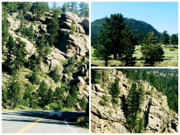 "The drive up to Estes Park is beautiful!  Quinn let out a bunch of ""oooohhhs"" as we drove through the canyon."