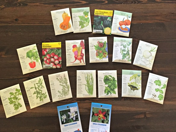 Seeds just waiting to be planted.