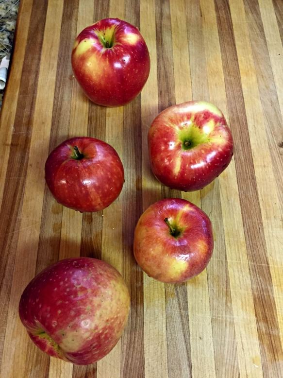 Wash up the apples. I used Sweet Tango & Gala. Peel, core, and chop.