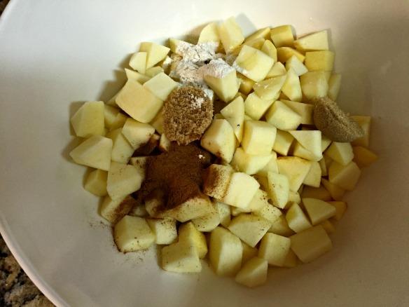 Add the apple chunks, cinnamon, brown sugar, flour, and lemon juice to a large bowl.