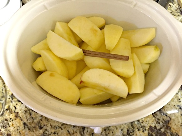 Add the apples and cinnamon. Cover and cook for 6-8 hours, until the apples are tender.