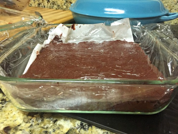 Place fudge in a parchment-lined baking pan. Chill in fridge for 2 hours before slicing and serving.