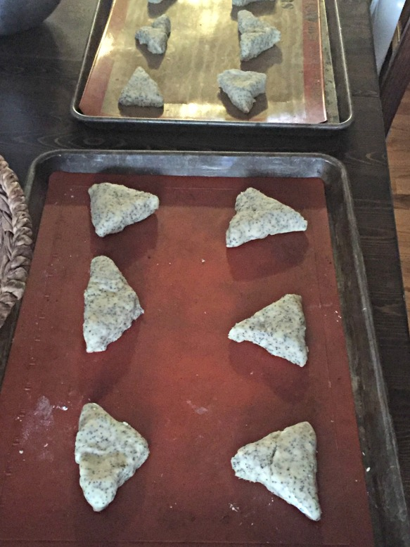 Place scones on lined baking sheet and bake in preheated 425 degree oven for about 10 minutes. The scones will puff up and start turning golden brown. Remove from oven and place pan on a wire cooling rack.