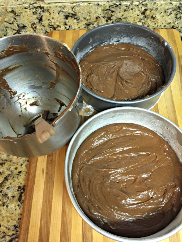 Pour the batter into the prepared cake pans, evenly distributing between the two and smoothing out the tops.