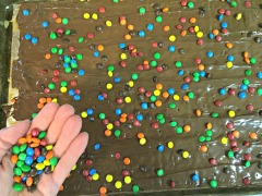 Immediately sprinkle on the M&Ms. Place pan in freezer for 1-2 hours.