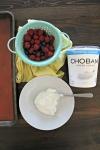 Yogurt + Berries